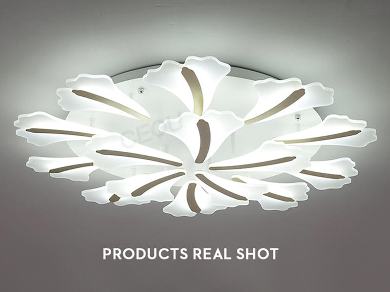 luxury ceiling led panel light glass manufacturer for bedroom-1