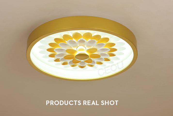 CEOU linear led kitchen ceiling lights supplier for living room-3