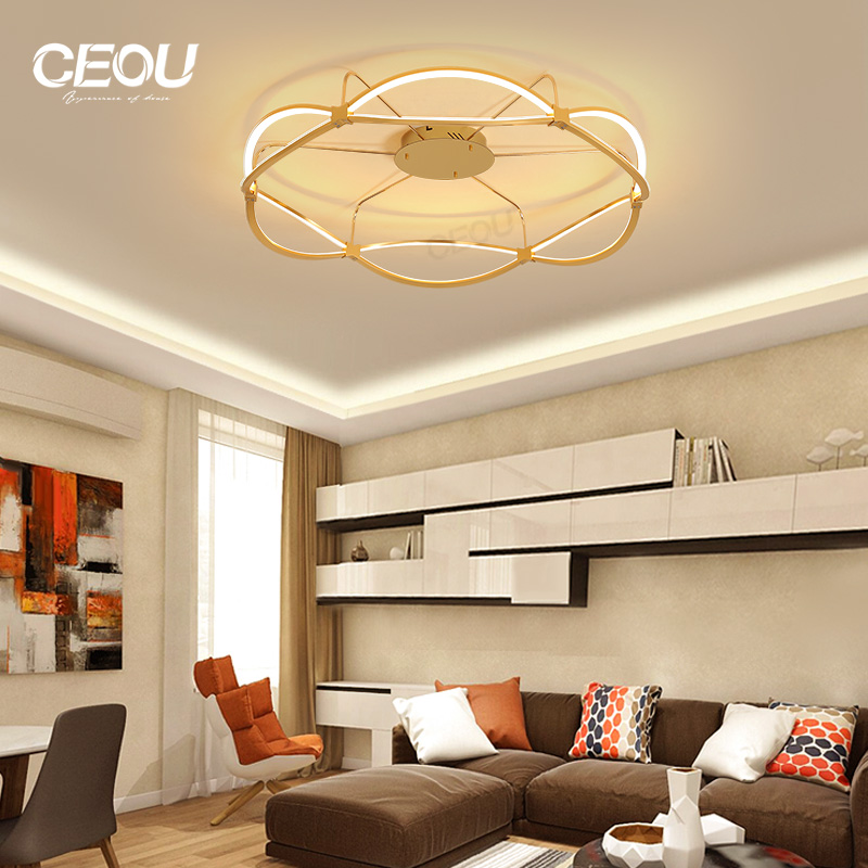 CEOU sunflower pattern led indoor ceiling lights supplier for home decor-CEOU-img-1
