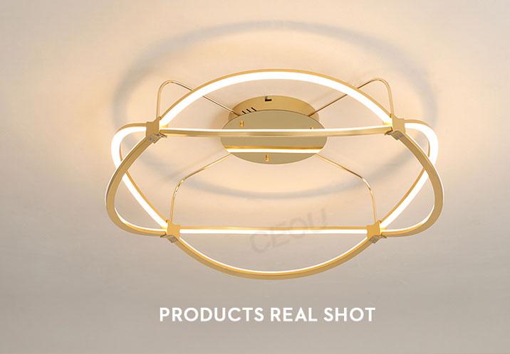 product-CEOU-Romantic modern aluminum ceiling lamplight CX1001-img