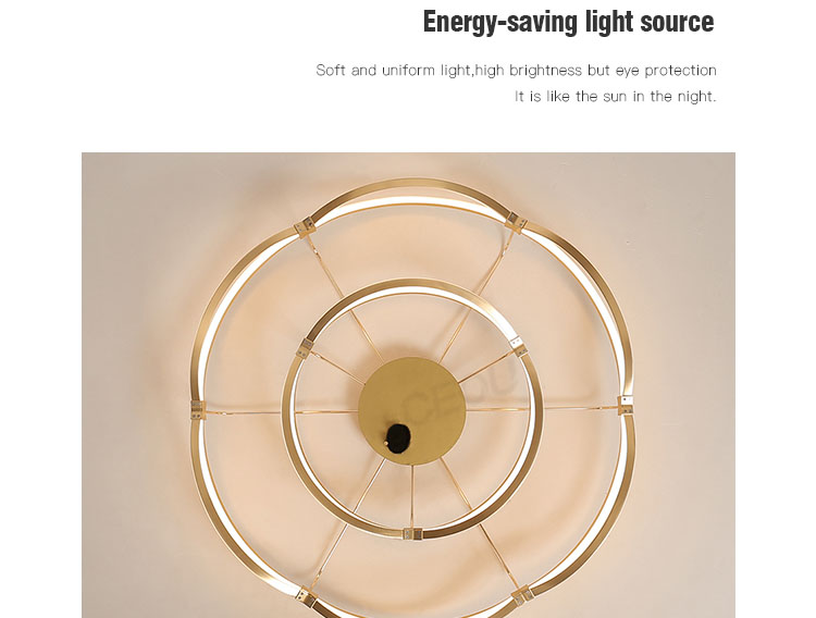 CEOU aluminum modern ceiling light manufacturer for hotel-6