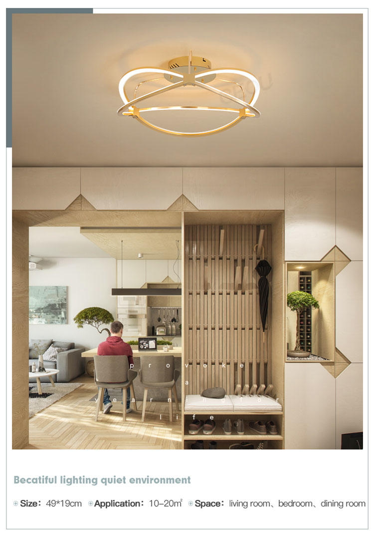 CEOU aluminum modern ceiling light manufacturer for hotel