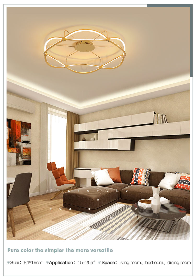 CEOU aluminum modern ceiling light manufacturer for hotel-10