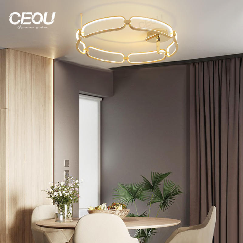 Modern decorative lighting ceiling for home decoration CX1014