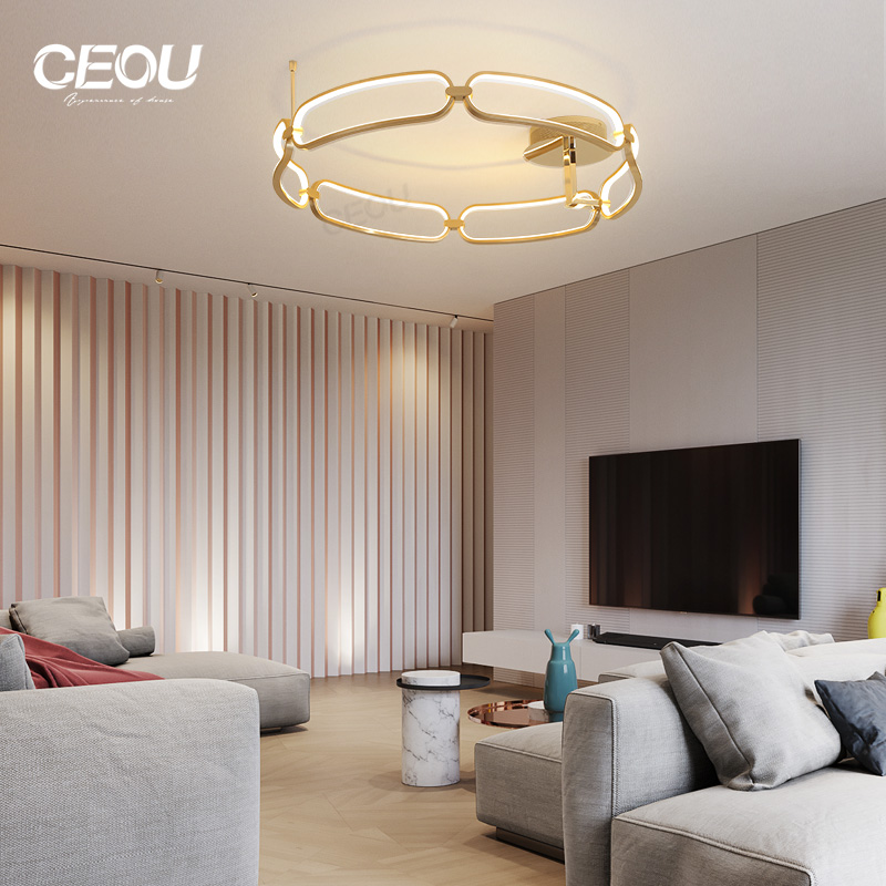 application-creative led kitchen ceiling lights flower shape customized for living room-CEOU-img-1