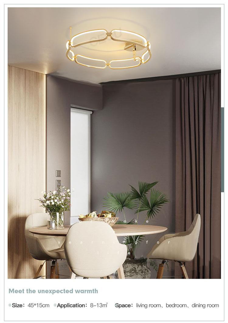 creative led kitchen ceiling lights flower shape customized for living room-9