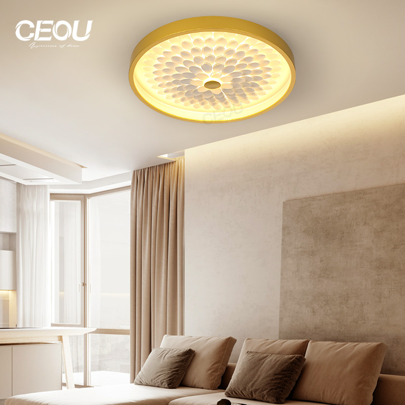 application-CEOU contemporary led surface mount ceiling lights supplier for hotel-CEOU-img-1