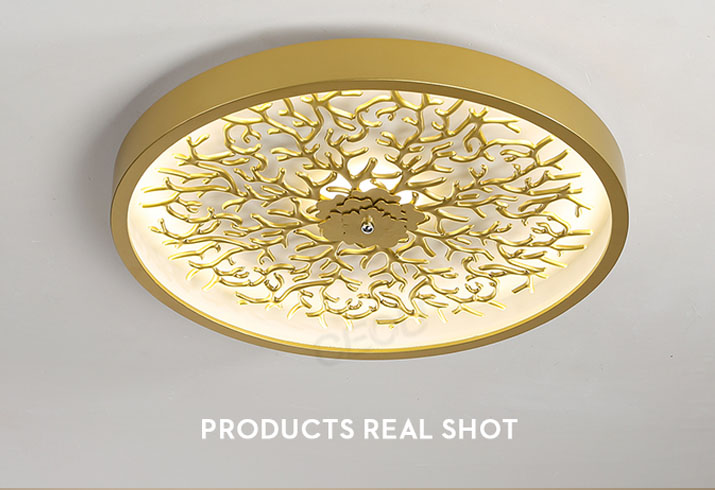 product-Hot sell round gold ceiling light modern for bedroom CX1029-CEOU-img