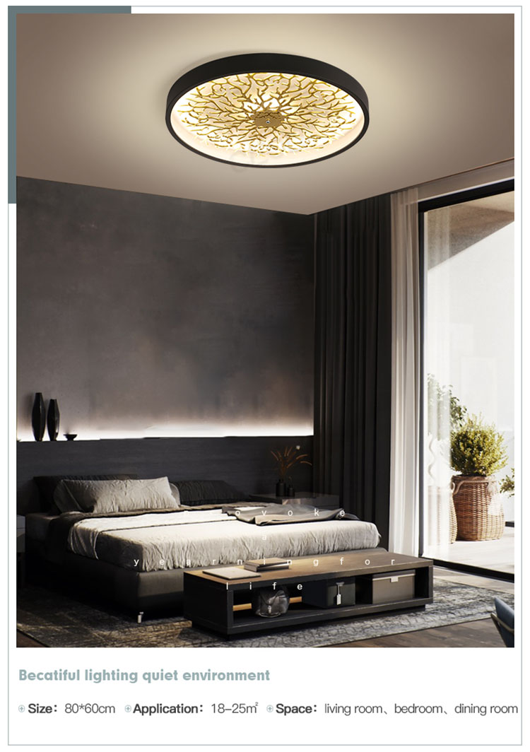 CEOU sand black decorative ceiling lights supplier for hotel-8