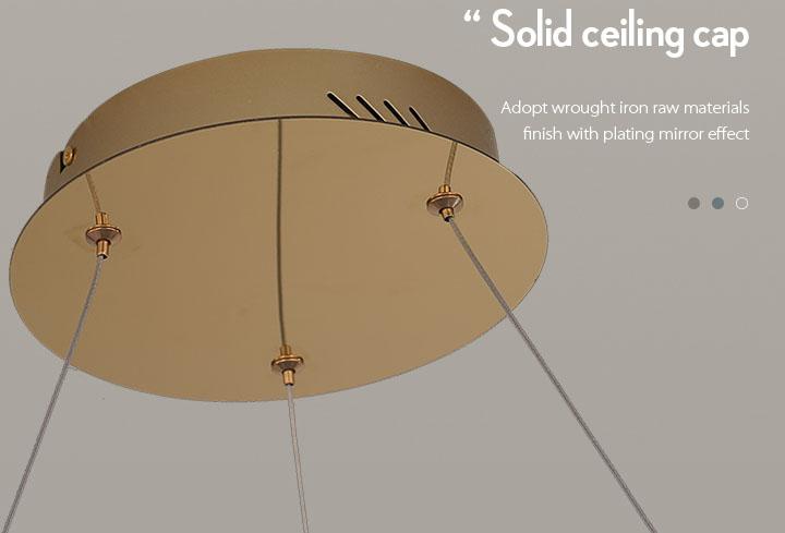 CEOU flower shaped pendant lamp manufacturer for home decor-7