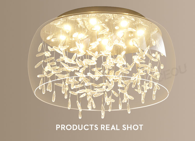 product-Hot sell round glass sahde ceiling light CX1024-CEOU-img