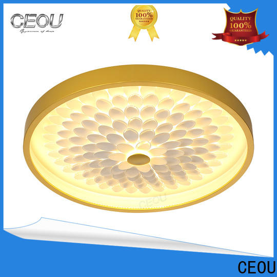 Top led ceiling lights price acrylic manufacturers for hotel