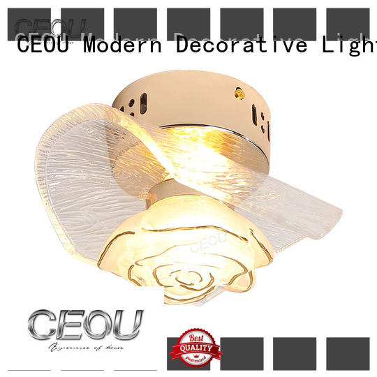 CEOU creative led wall lights indoor manufacturer for aisle