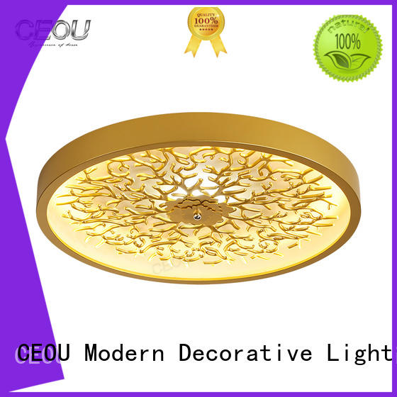 CEOU contemporary led lights for bedroom ceiling supplier for bedroom