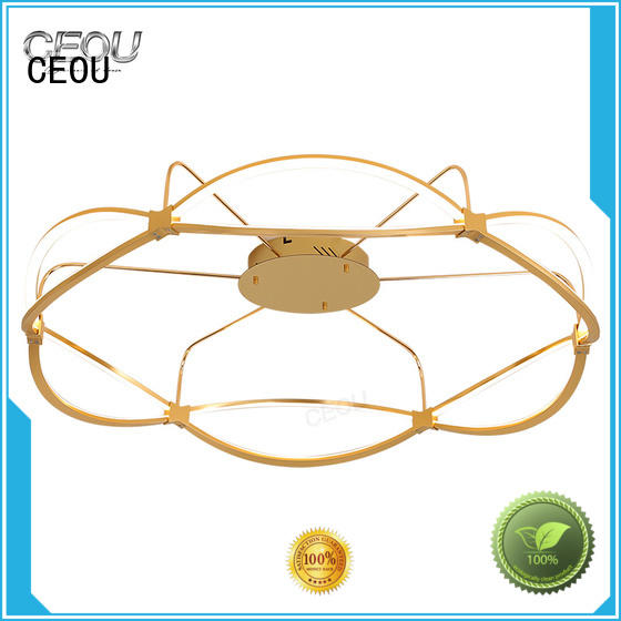 CEOU high quality led ceiling lights for homes Suppliers for hotel