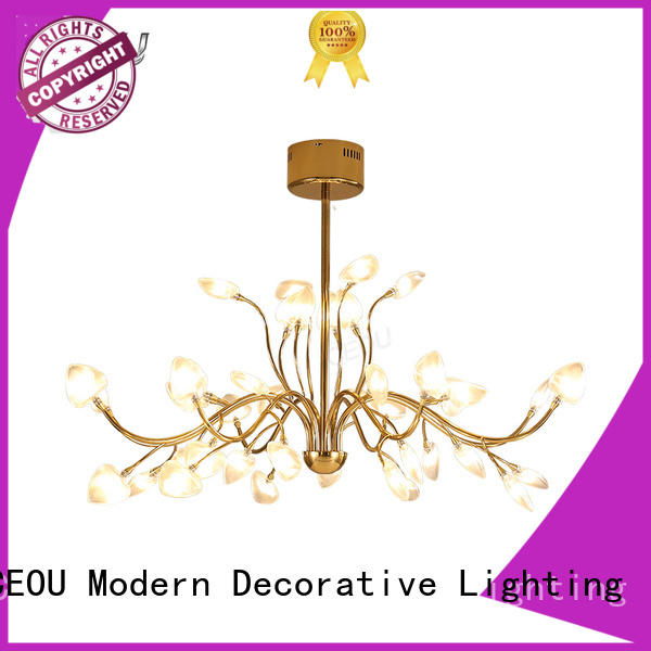 CEOU circular modern hanging lamp Supply for home decor