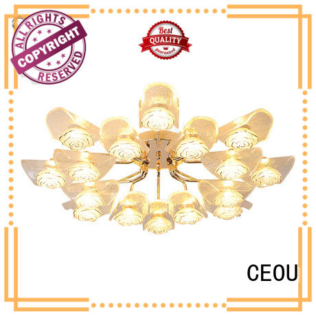CEOU contemporary modern ceiling lights living room for home decor
