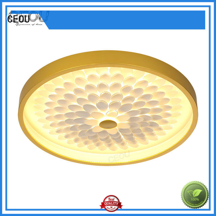 CEOU New inside ceiling lights customized for hotel