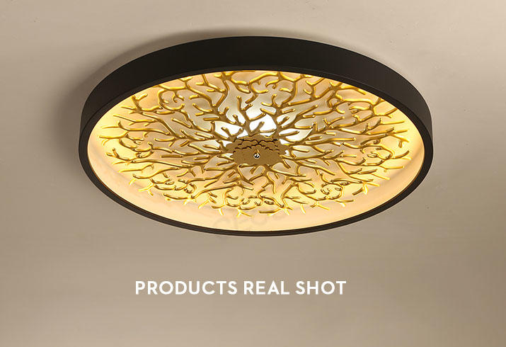 CEOU sand black decorative ceiling lights supplier for hotel-3