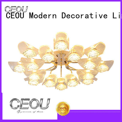 CEOU aluminum led lights for bedroom ceiling customized for living room