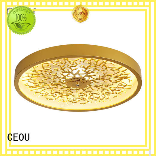 CEOU creative led ceiling lights price Suppliers for living room