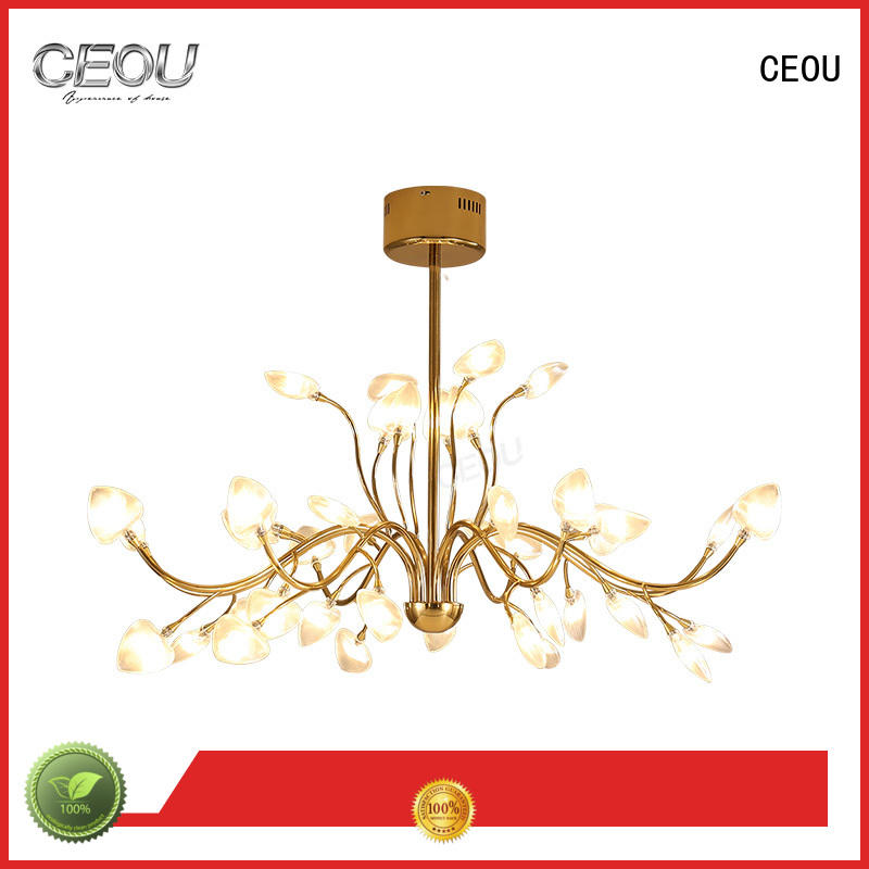 CEOU extraordinary hanging pendant lights supplier for home decor