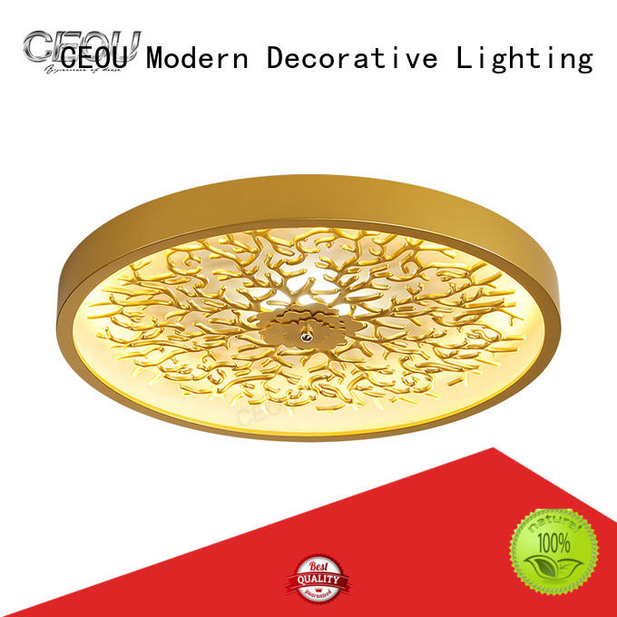CEOU High-quality led surface mount ceiling lights factory for hotel