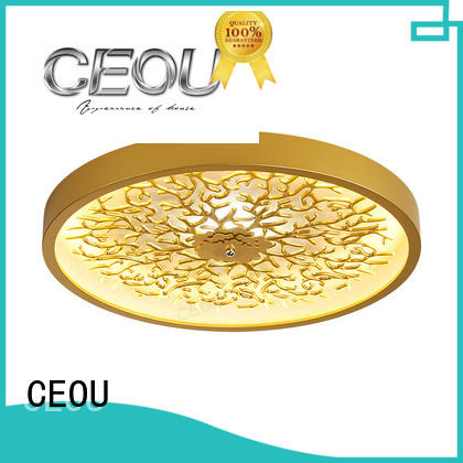 CEOU contemporary modern ceiling lamps customized for home decor