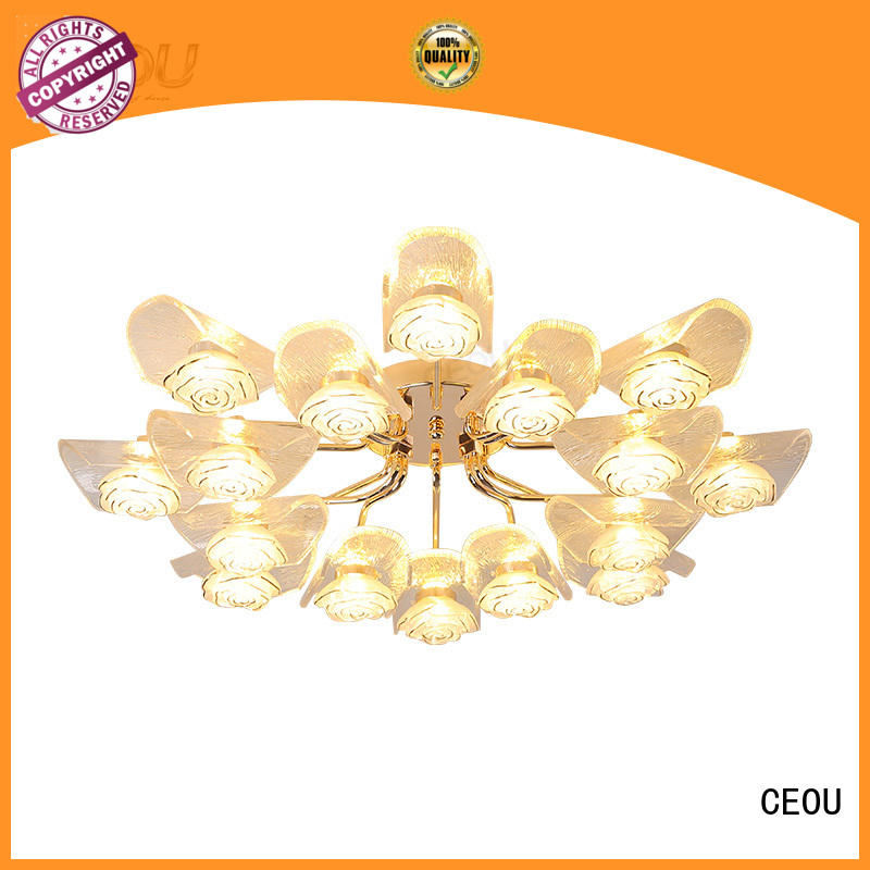 CEOU creative decorative led ceiling lights acrylic for living room