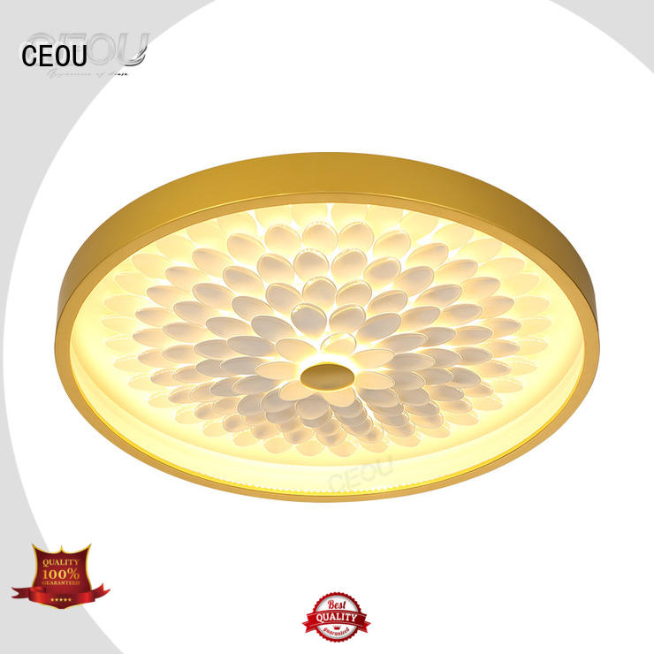 CEOU contemporary led surface mount ceiling lights supplier for hotel