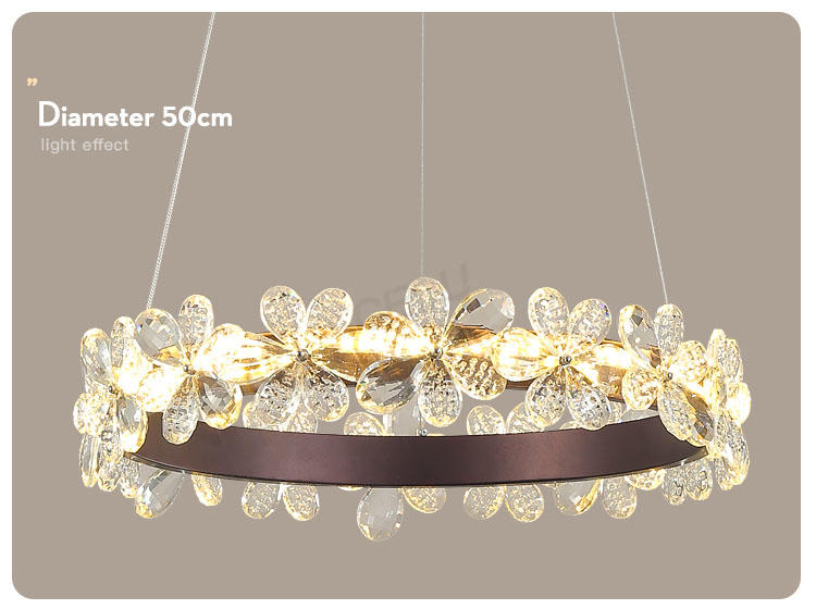 CEOU romantic hanging lamp design acrylic for dinning room-CEOU-img-1