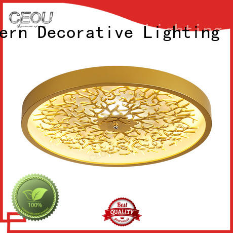 CEOU acrylic modern ceiling light high quality for living room