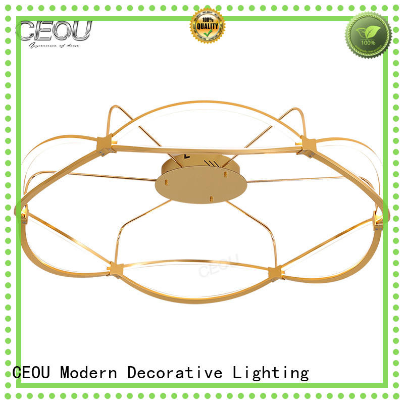 CEOU creative led ceiling lamp linear for hotel