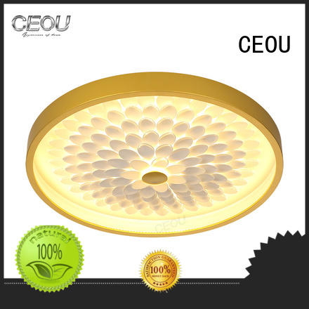CEOU beautiful contemporary modern ceiling lights factory for living room